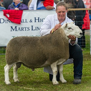 Royal Highland Show NCC Hill Results 2019