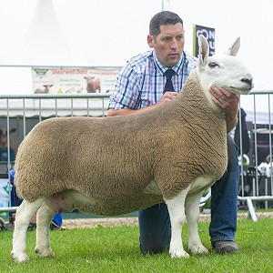 Great Yorkshire Show NCC Park Results 2019
