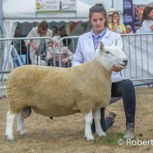 Great Yorkshire Show NCC Park Results 2018